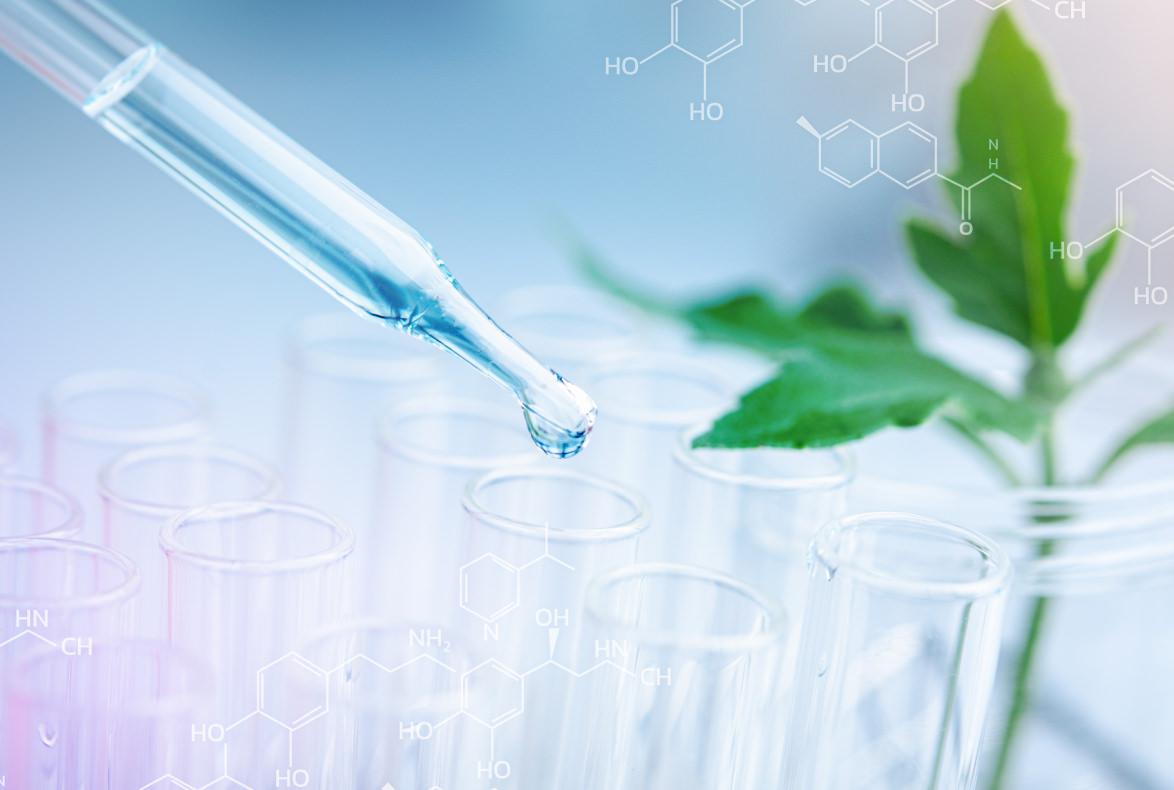 Las plantas y animales obtenidos por procedimientos esencialmente biológicos no son patentables