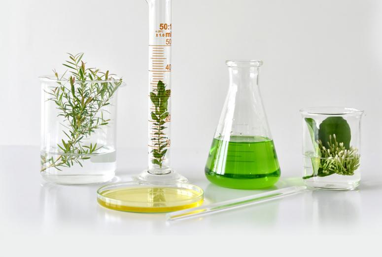 La patentabilidad de plantas y animales obtenidos por procedimientos esencialmente biológicos a discusión en la EPO